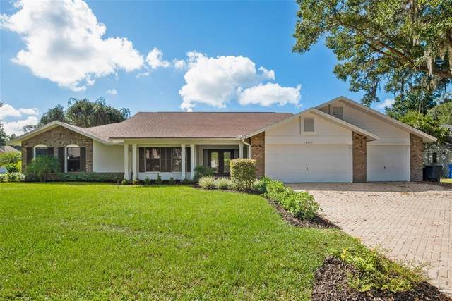 18233 Clear Lake Drive, Lutz, FL 33548 (MLS #T3335659) :: Griffin Group