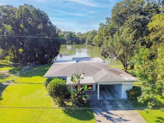 1708 W Bedingfield Drive, Tampa, FL 33603 (MLS #T3335678) :: Blue Chip International Realty