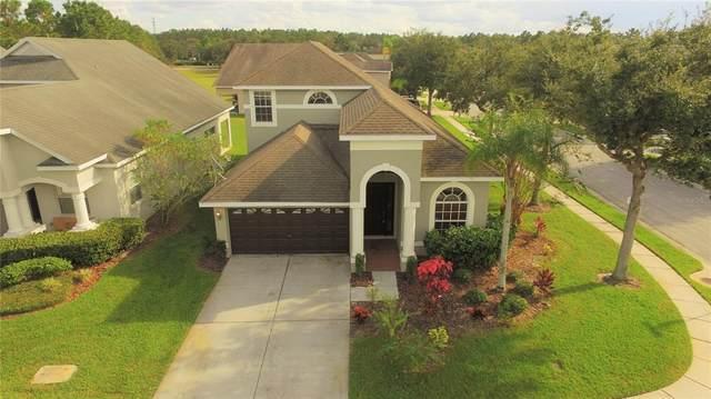 30710 Pumpkin Ridge Drive, Wesley Chapel, FL 33543 (MLS #T3335693) :: Sarasota Home Specialists