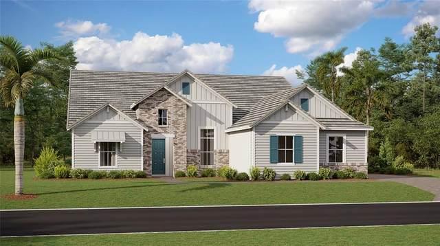 8023 Peaceful Circle, Sanford, FL 32771 (MLS #T3335726) :: Team Bohannon