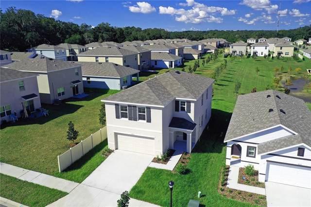 5210 Hillside Meadow Pl, Tampa, FL 33610 (MLS #T3335735) :: Lockhart & Walseth Team, Realtors