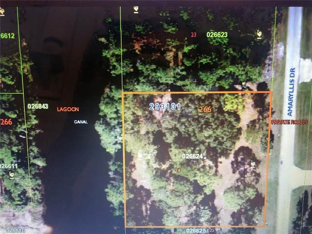 13 Amaryllis Drive S, Indian Lake Estates, FL 33855 (MLS #T3335744) :: GO Realty