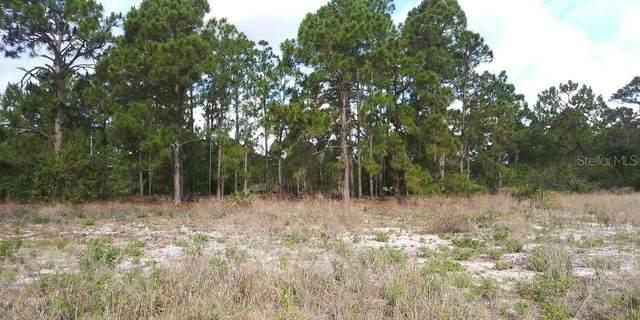 644 Stargazer Drive, Lake Placid, FL 33852 (MLS #T3335746) :: Everlane Realty
