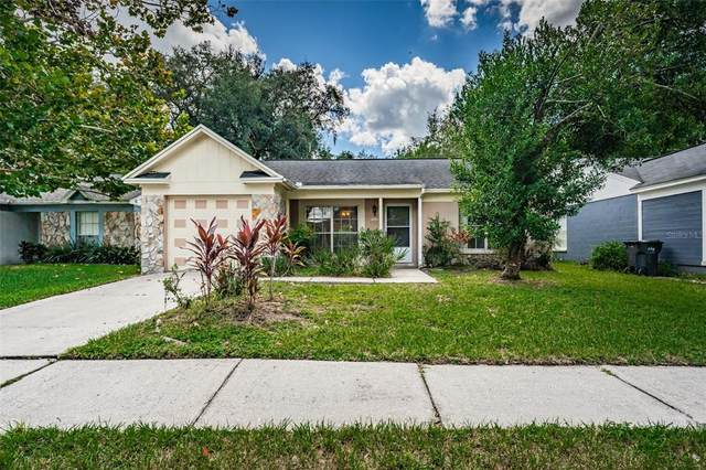 8519 Misty River Court, Tampa, FL 33637 (MLS #T3335758) :: RE/MAX LEGACY