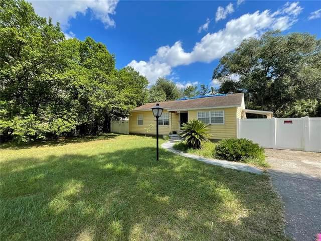 8105 N Otis Avenue, Tampa, FL 33604 (MLS #T3335761) :: RE/MAX LEGACY