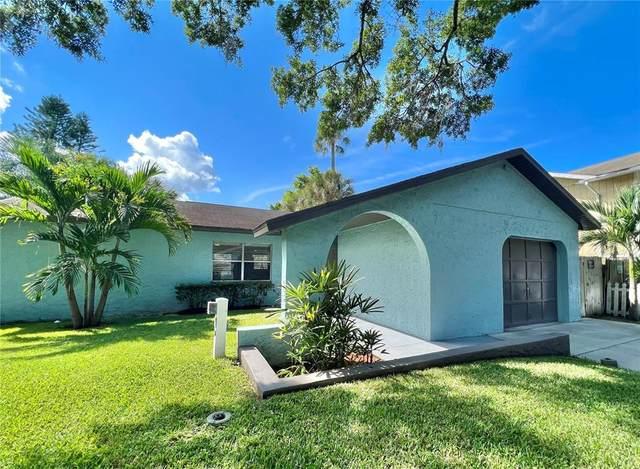 4526 Edith Street, New Port Richey, FL 34652 (#T3335805) :: Caine Luxury Team