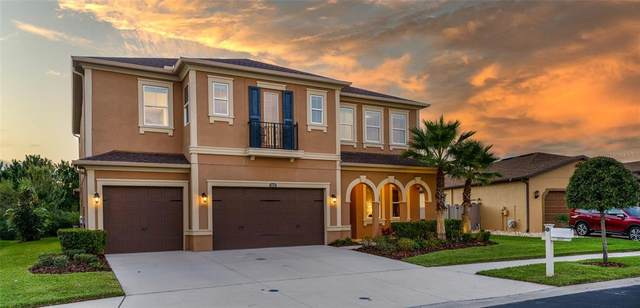 2537 Gwynhurst Boulevard, Wesley Chapel, FL 33543 (MLS #T3335821) :: Cartwright Realty