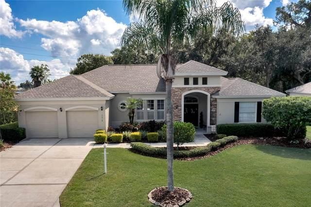 3018 Forest Hammock Drive, Plant City, FL 33566 (MLS #T3335831) :: Team Buky