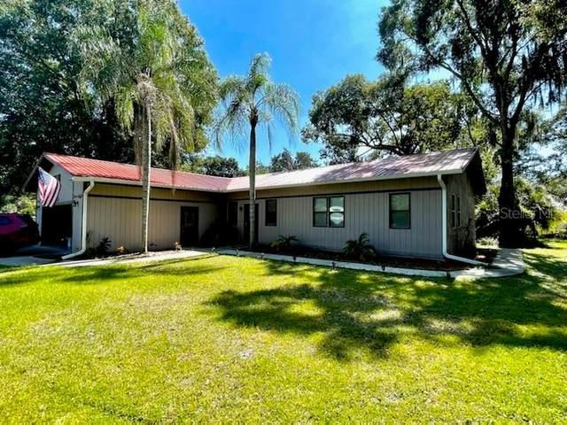 4513 Estate Drive, Plant City, FL 33567 (MLS #T3335840) :: Team Buky