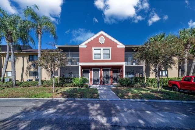 5642 Baywater Drive #5642, Tampa, FL 33615 (MLS #T3335846) :: Team Buky