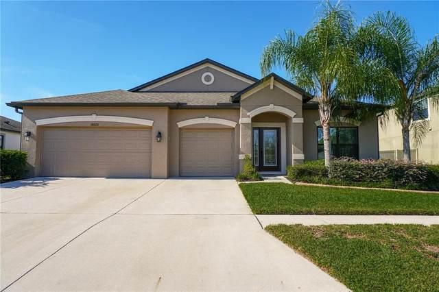18620 Cortes Creek Boulevard, Spring Hill, FL 34610 (MLS #T3335881) :: Kelli Eggen at RE/MAX Tropical Sands