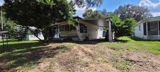 39326 Redhill Drive, Zephyrhills, FL 33542 (MLS #T3335882) :: SunCoast Home Experts