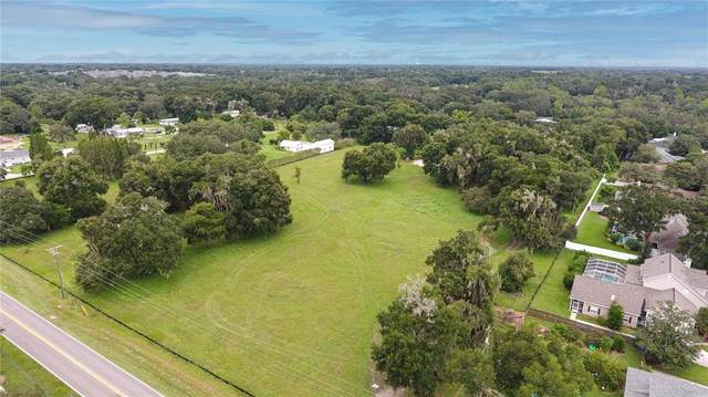 0 Durant Road, Dover, FL 33527 (MLS #T3335921) :: Medway Realty