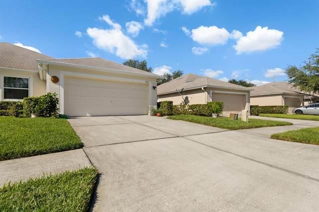 5637 Autumn Shire Drive, Zephyrhills, FL 33541 (MLS #T3335926) :: Team Pepka