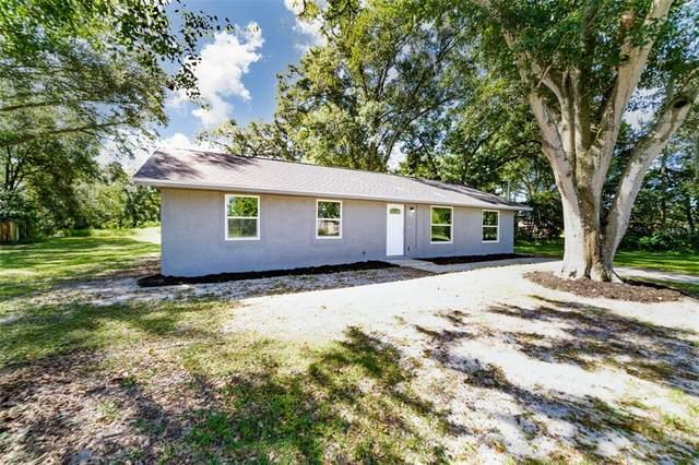 2621 Keysville Drive, Lithia, FL 33547 (MLS #T3335927) :: Medway Realty
