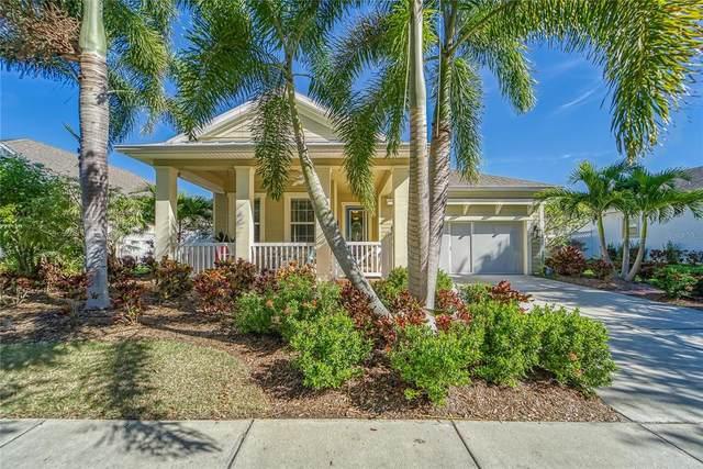 521 Manns Harbor Drive, Apollo Beach, FL 33572 (MLS #T3335981) :: Frankenstein Home Team
