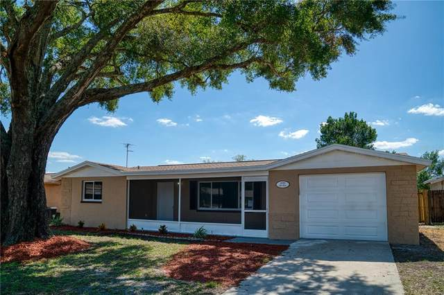 6116 1ST Avenue, New Port Richey, FL 34653 (MLS #T3335982) :: Griffin Group