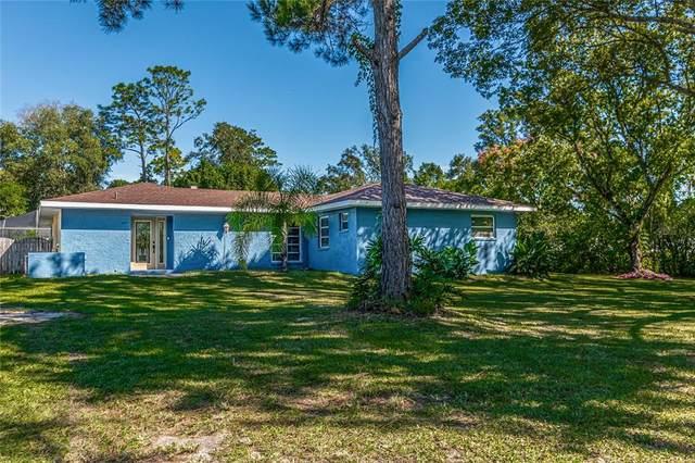 39443 Pretty Pond Road, Zephyrhills, FL 33540 (MLS #T3336006) :: Expert Advisors Group