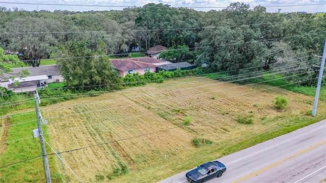 Livingston Avenue, Lutz, FL 33559 (MLS #T3336015) :: Blue Chip International Realty