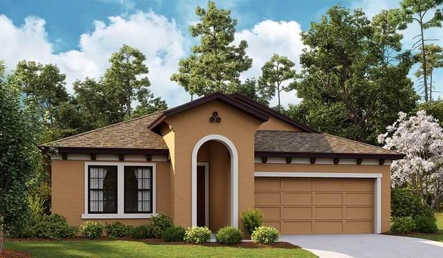 4549 Emprise Way, Land O Lakes, FL 34638 (MLS #T3336036) :: Bustamante Real Estate
