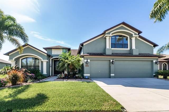 340 Hope Bay Loop, Apollo Beach, FL 33572 (MLS #T3336055) :: Frankenstein Home Team