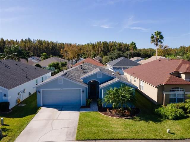 30720 Wrencrest Drive, Wesley Chapel, FL 33543 (MLS #T3336058) :: Cartwright Realty