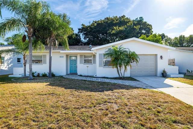 310 Scott Court, Palm Harbor, FL 34684 (MLS #T3336062) :: The Truluck TEAM