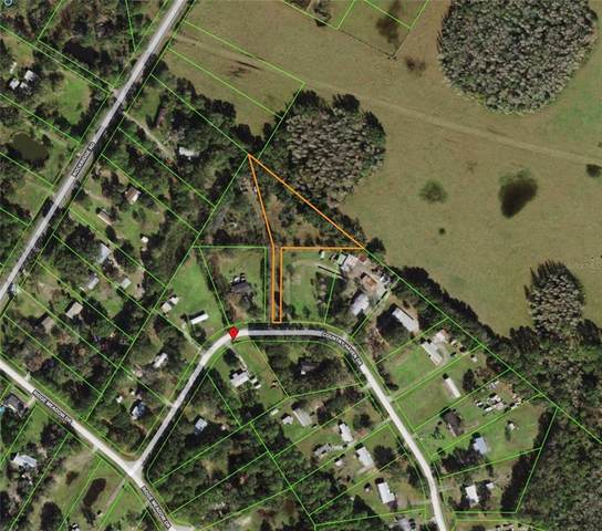 11221 Country Haven Drive, Lakeland, FL 33809 (MLS #T3336071) :: Everlane Realty