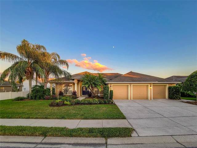 1940 Winsloe Drive, Trinity, FL 34655 (MLS #T3336083) :: Vacasa Real Estate
