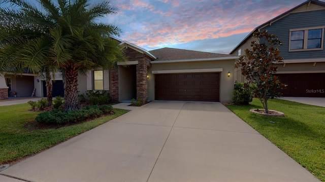 11063 Little Blue Heron Drive, Riverview, FL 33579 (MLS #T3336087) :: Burwell Real Estate