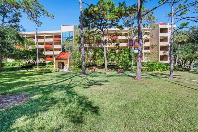 3078 Eastland Boulevard #115, Clearwater, FL 33761 (MLS #T3336092) :: Rabell Realty Group