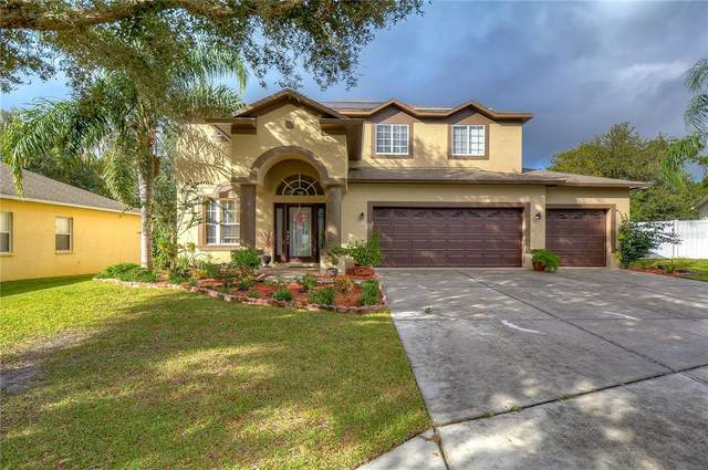 14645 Deacon Court, Spring Hill, FL 34609 (MLS #T3336101) :: Everlane Realty