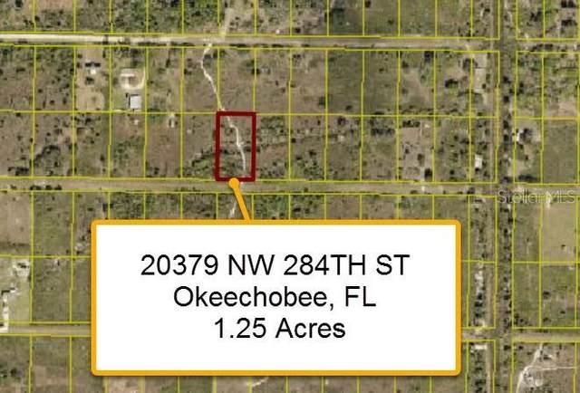 20379 NW 284 Street, Okeechobee, FL 34972 (MLS #T3336106) :: Rabell Realty Group