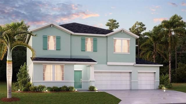 237 Pineywoods Street, Saint Cloud, FL 34772 (MLS #T3336108) :: Bustamante Real Estate