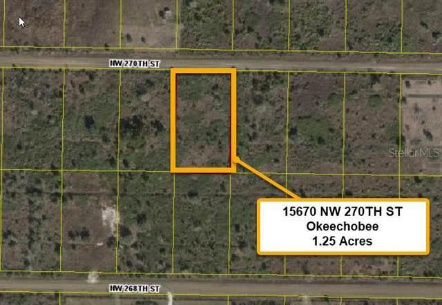 15670 NW 270TH Street, Okeechobee, FL 34972 (MLS #T3336123) :: Rabell Realty Group