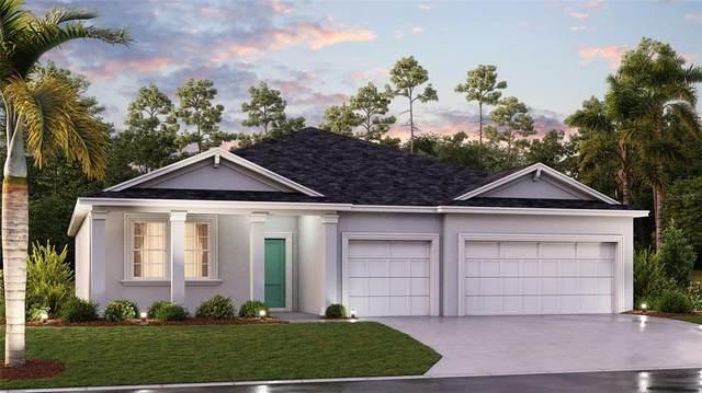 229 Pineywoods Street, Saint Cloud, FL 34772 (MLS #T3336138) :: Bustamante Real Estate
