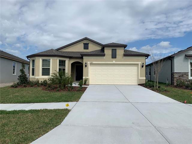 13811 Carlow Park Drive, Riverview, FL 33579 (MLS #T3336149) :: Rabell Realty Group