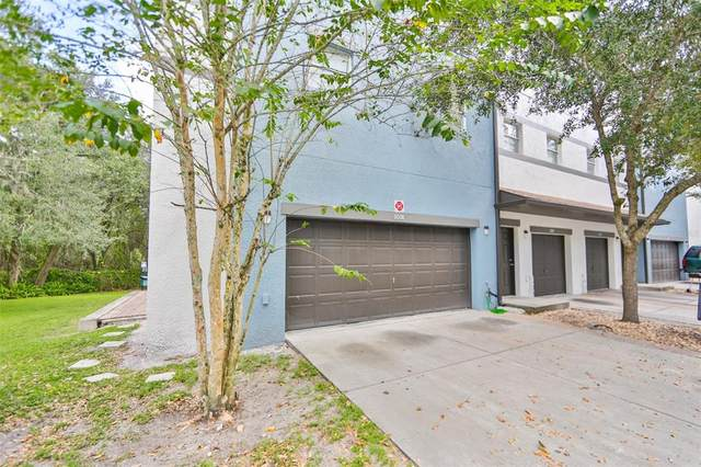 6008 Gibson Avenue, Tampa, FL 33617 (MLS #T3336170) :: Rabell Realty Group