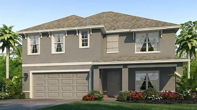 4907 Gray Owl Terrace, Palmetto, FL 34221 (MLS #T3336173) :: Medway Realty