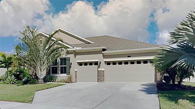 441 Amethyst Avenue, Auburndale, FL 33823 (MLS #T3336177) :: Carmena and Associates Realty Group