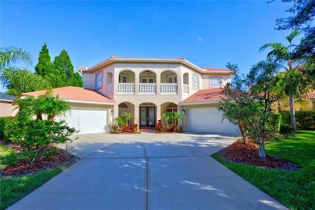4311 Harborwatch Lane, Lutz, FL 33558 (MLS #T3336201) :: Future Home Realty
