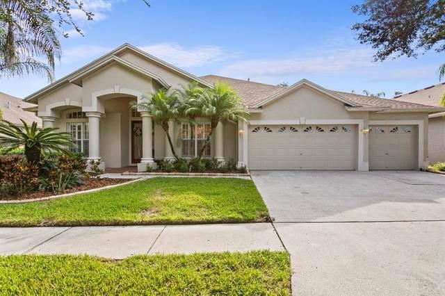 19221 Wind Dancer Street, Lutz, FL 33558 (MLS #T3336207) :: Burwell Real Estate