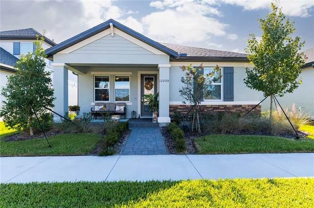 12099 Gavin Lane, Odessa, FL 33556 (MLS #T3336214) :: Southern Associates Realty LLC