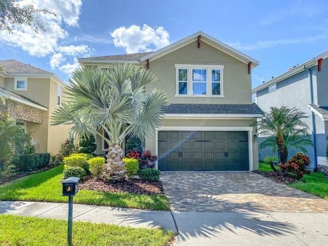 16303 Bayberry View Drive, Lithia, FL 33547 (MLS #T3336227) :: Frankenstein Home Team