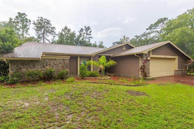 9 Canela Court, Homosassa, FL 34446 (MLS #T3336254) :: Delgado Home Team at Keller Williams