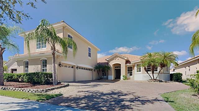 3536 Somerset Circle, Kissimmee, FL 34746 (MLS #T3336256) :: Vacasa Real Estate