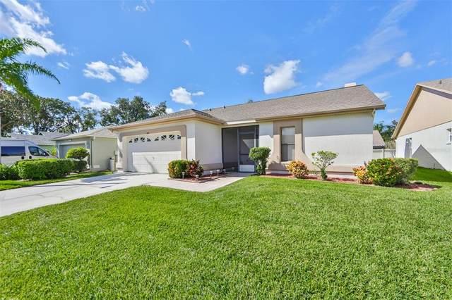 13107 Faulkner Place #102, Riverview, FL 33579 (MLS #T3336284) :: Griffin Group