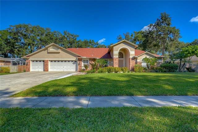 204 Myrtle Ridge Road, Lutz, FL 33549 (MLS #T3336292) :: Visionary Properties Inc