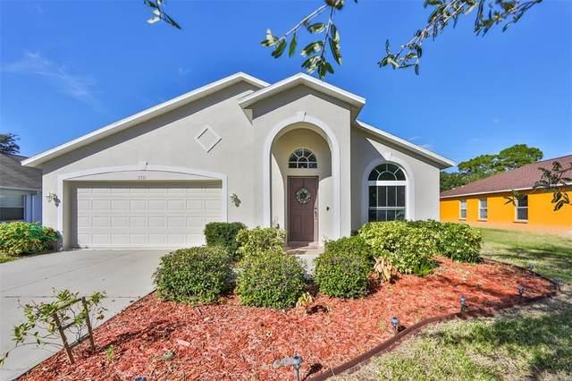 2331 Roanoke Springs Drive, Ruskin, FL 33570 (MLS #T3336344) :: Frankenstein Home Team