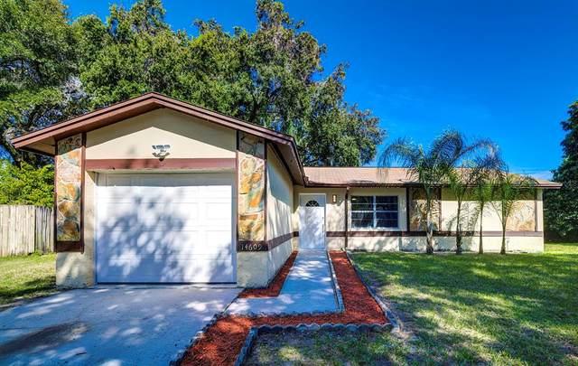 14609 Knoll Ridge Drive, Tampa, FL 33625 (MLS #T3336354) :: Sarasota Home Specialists